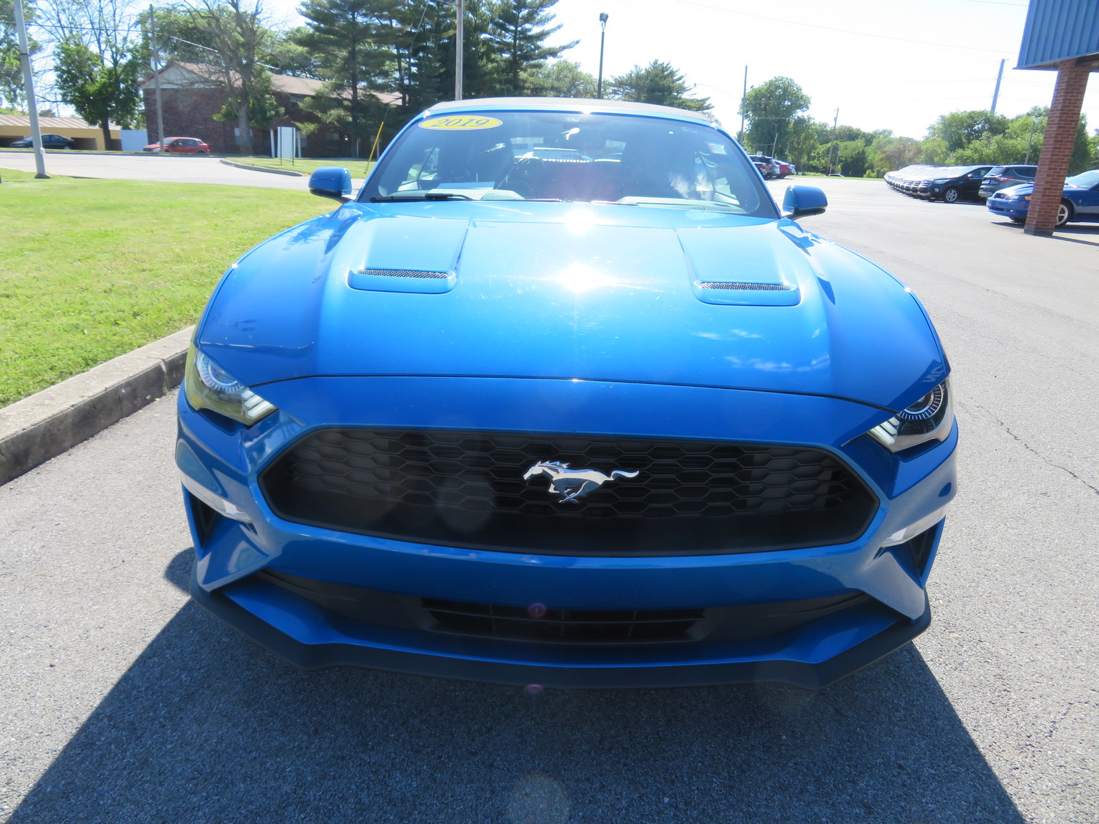 Pre-Owned 2019 Ford Mustang EcoBoost Convertible